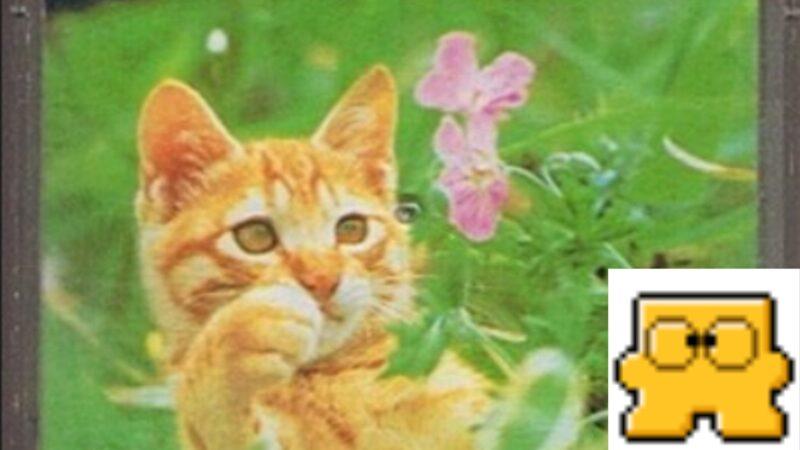 子猫物語ファミコン